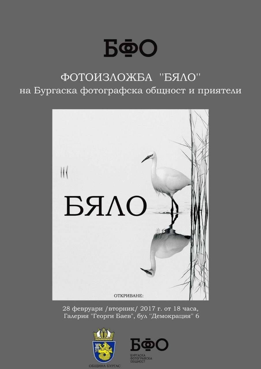 """БФО представя своята трета  изложба """"Бяло"""""""